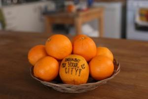IYC-orange_3425